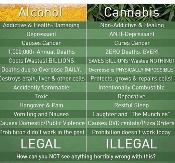 cannabis over alcohol